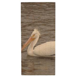 American White Pelican In Breeding Condition Wood USB 2.0 Flash Drive