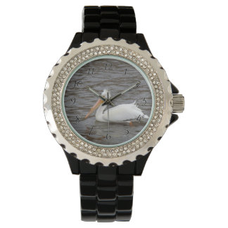 American White Pelican In Breeding Condition Wrist Watch