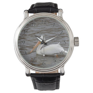 American White Pelican In Breeding Condition Wrist Watches