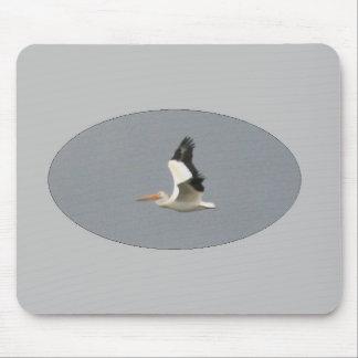 American White Pelican in Flight Mousepad