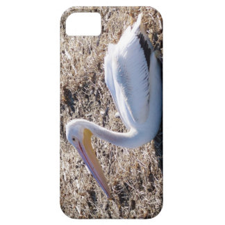 American White Pelican iPhone 5 Cover