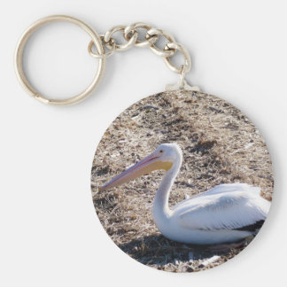 American White Pelican Keychains