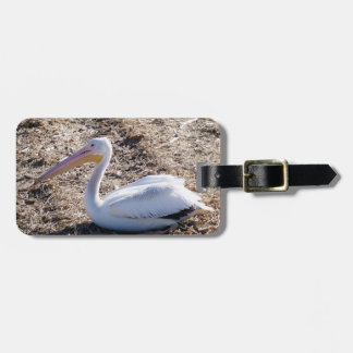 American White Pelican Luggage Tags