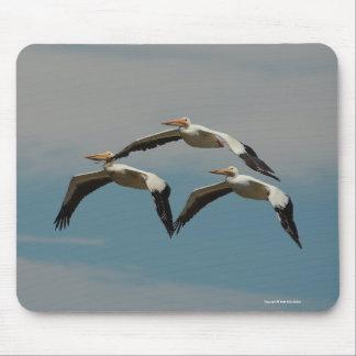 American White Pelican Mousepad 3