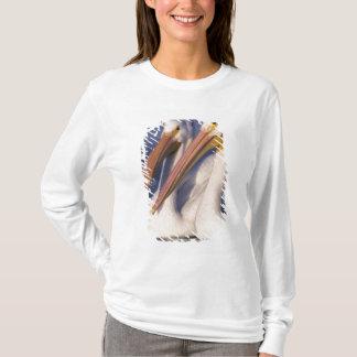American White Pelican, Pelecanus T-Shirt