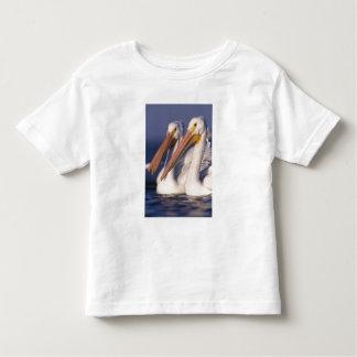 American White Pelican, Pelecanus Toddler T-Shirt