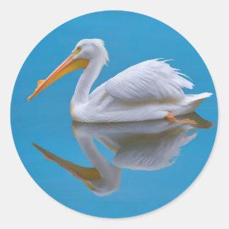 American White Pelican Sticker
