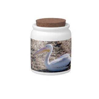 American White Pelican Candy Jars