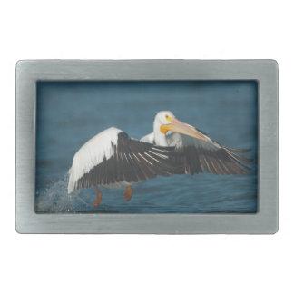 American White Pelican Taking Flight from water Rectangular Belt Buckles