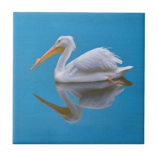 American White Pelican Tile