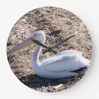 American White Pelican Wallclocks