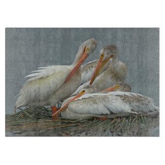 American White Pelicans -Pelecanus erythrorhynchos Cutting Boards
