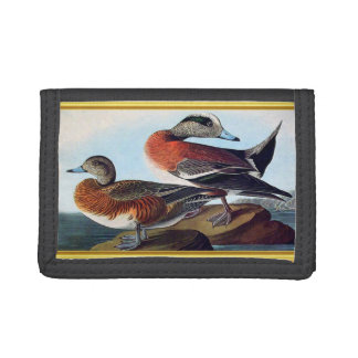 American Widgeon ducks on a rock Tri-fold Wallet