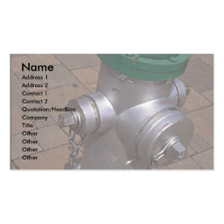 Americana (hydrant), Florida, U.S.A. Pack Of Standard Business Cards