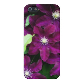Amethyst Clematis iPhone 5/5S Covers