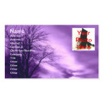 Amethyst Skies Business Cards