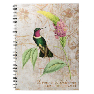 Amethyst Throated Hummingbird Notebooks
