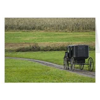 Amish buggy on farm lane, Northeastern Ohio, Card