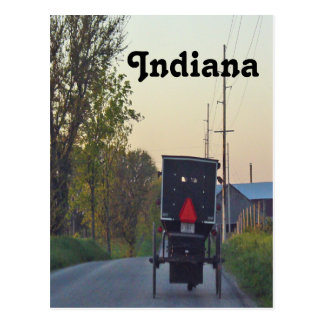 Amish Buggy Postcard