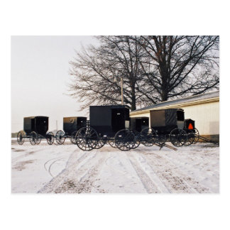 Amish Carriages On Farm-Postcard Postcard