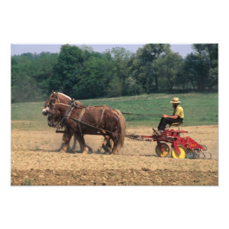 Amish Country simple people in farming with Photo Print