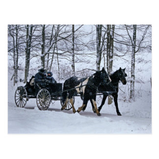 Amish Country Winter Carriage Ride-Postcard