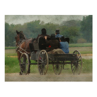 Amish Family Outing Postcard