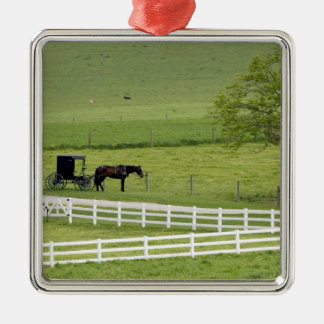 Amish farm with horse and buggy near Berlin, Christmas Ornament