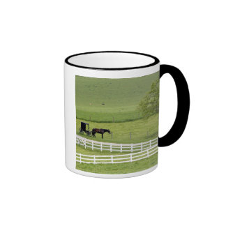 Amish farm with horse and buggy near Berlin, Mugs