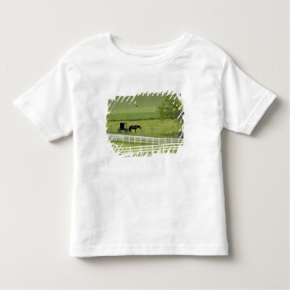 Amish farm with horse and buggy near Berlin, Toddler T-Shirt