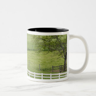 Amish farm with horse and buggy near Berlin, Two-Tone Coffee Mug