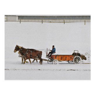 Amish Fertilizer Spreader-Postcard Postcard