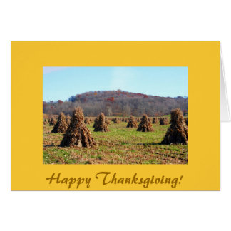 Amish Fields, Happy Thanksgiving! Card