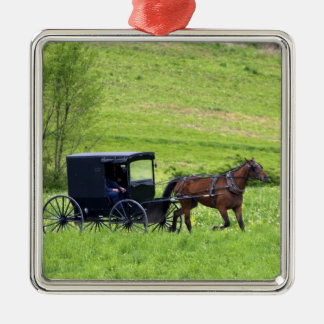 Amish horse and buggy near Berlin, Ohio. Christmas Ornament