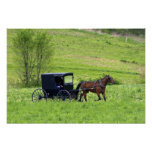 Amish horse and buggy near Berlin, Ohio. Poster