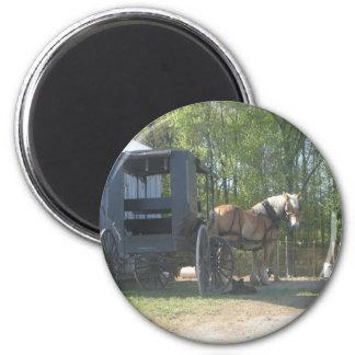 Amish Horse Refrigerator Magnet