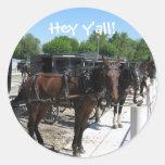 Amish Horses Say Hi! Sticker