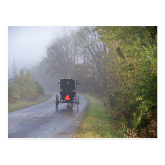 amish in a foggy forest postcards