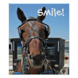 Amish Smile Poster