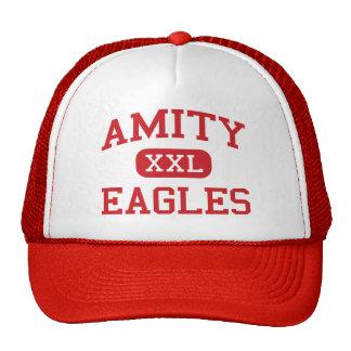 Amity - Eagles - Middle School - Amity Oregon Mesh Hats