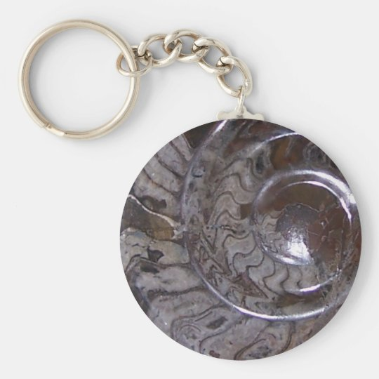 ammonite basic round button key ring