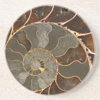 Ammonite Beverage Coaster