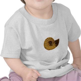 Ammonite Fossil Shirt