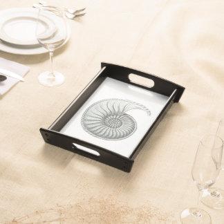 Ammonite Serving Tray