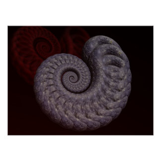 Ammonite Shell Poster