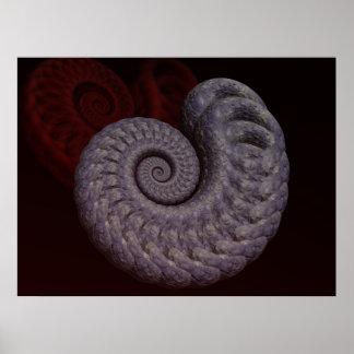 Ammonite Shell Poster