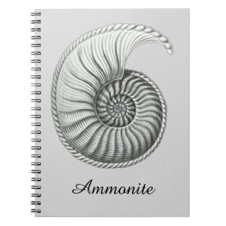 Ammonite Spiral Notebooks