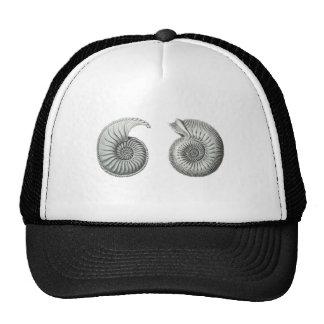 Ammonites Trucker Hat