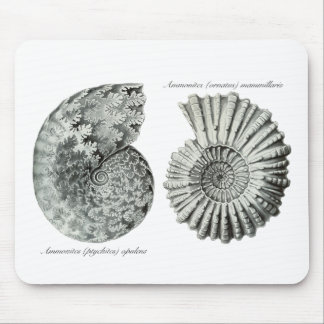 Ammonites Mouse Pads