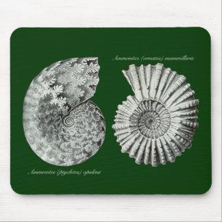 Ammonites Mousepads